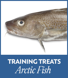 Arctic Fish Treats (8)